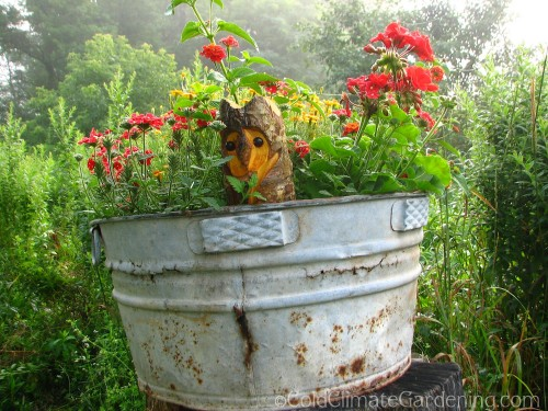 old washtub with wooden owl