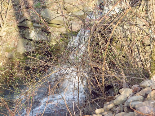 view of culvert waterfall obscured by brush