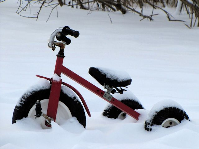 winter tricycle