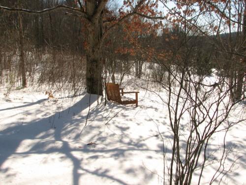 winter walk juneberry bench