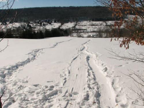Winter walk top of the field