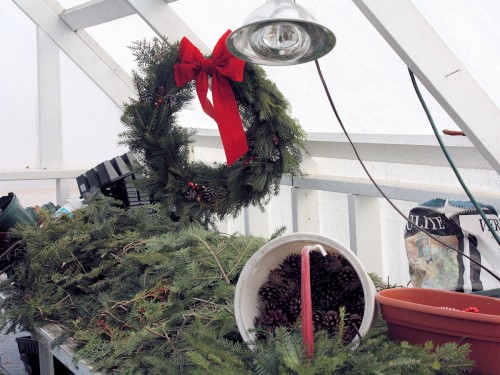 Neil Moran Wreath making in greenhouse