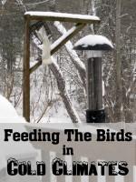 snowy bird feeder